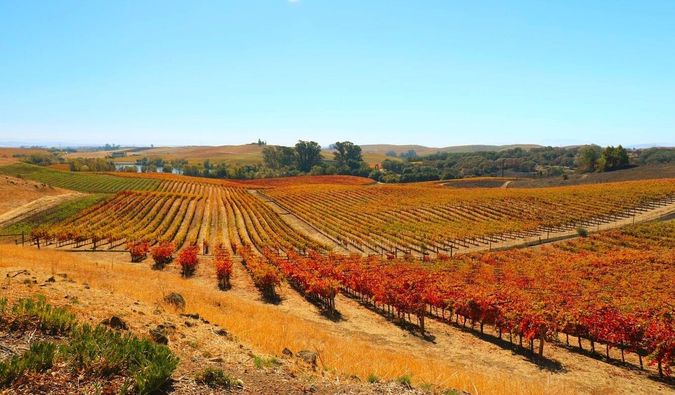 Autumn in Napa - Discovering Napa Valley