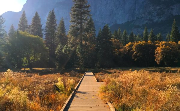 Yosemite - walking path